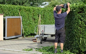 professional Harlow hedge cutting services