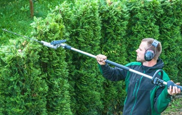 Harlow hedge trimming costs