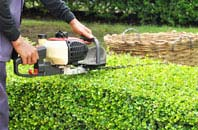 Harlow hedge trimming services