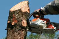 free Harlow tree removal quotes
